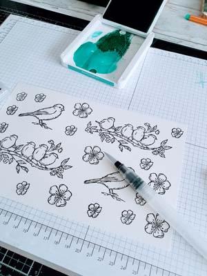 Blätter und Blüten colorieren