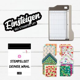 einsteigen Stampin UP